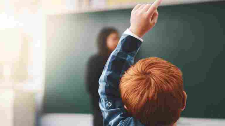 Classroom teaching available for young children