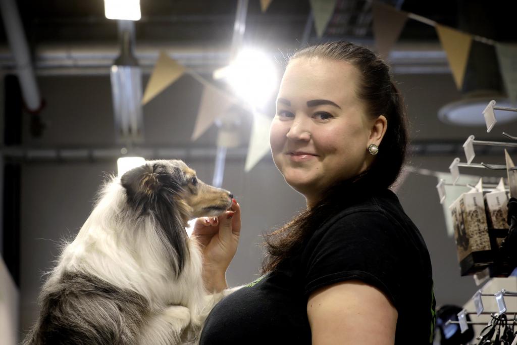 Tänään Demi-koira pääsi mukaan työpaikalle. Kuva: Liisa Takala