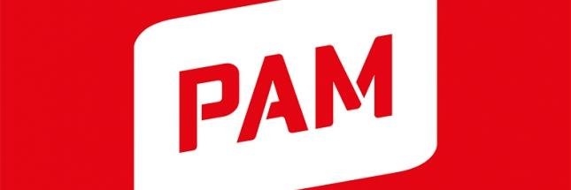 PAMin logo ja lippu