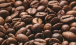 Finnwatch: Child labour found behind coffee imported to Finland