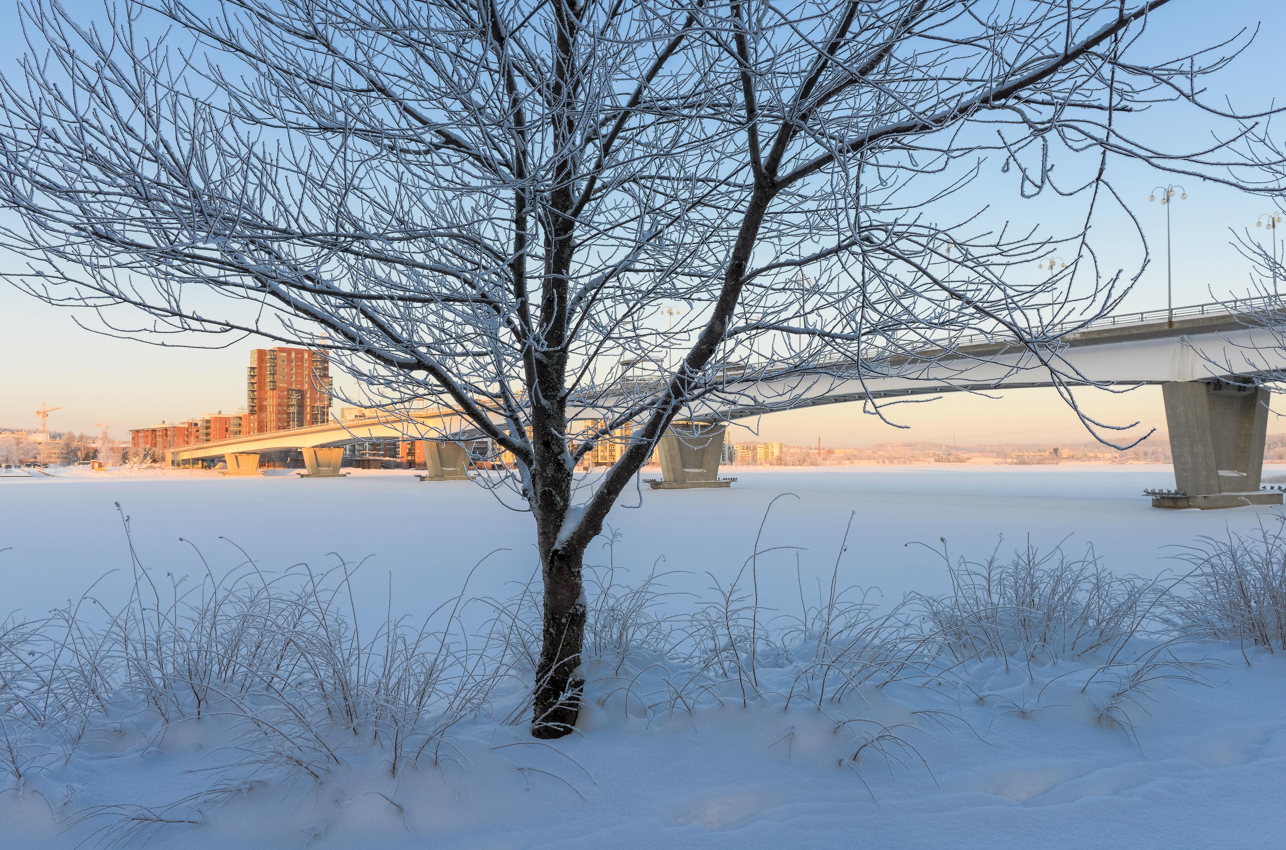 Talvilomaa koskevia määräyksiä eri aloilla